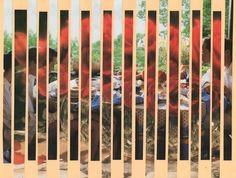 Composición de una imagen a partir de cortes rectos paralelos mediante 2 imagenes