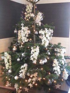 Our Chrismas tree