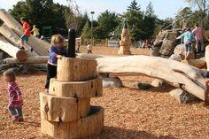 log climbing_westmoreland_learning landscapes