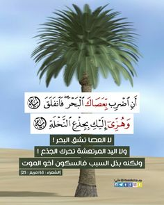 Islamic Quran Verses, Quran Quotes, Arabic Quotes, Islamic Quotes, Islamic Art, Duaa Islam, Allah Islam, Islam Quran, Quran Arabic