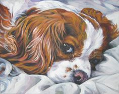 This looks JUST like my boy!  Cavalier King Charles Spaniel art print CANVAS by TheDogLover, $19.99