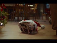 McVitie's Victoria Christmas Choir TV Ad - YouTube