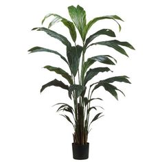 6' Reed Bamboo Silk Palm Tree w/Pot (pack of 2) >>> Read more reviews of the product by visiting the link on the image.