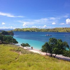 35 Places That Will Make You Fall In Love With Indonesia Komodo National Park, National Parks, Komodo Island, Borobudur, Padang, Pink Beach, Falling In Love, Bali, Country