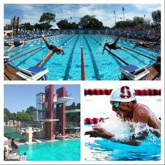 Stanford University Swimming Pool Stanford Univerro Stanford University Pinterest Nike