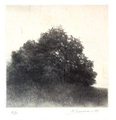 Shigeki Tomura was born in 1951 in Hachinohe, Japan. He participated in the Kokuga Association exhibitions He is devoted to printmaking, drypoint and etching, in particular. Although Tomura makes beautiful drawings and watercolors, the line Abstract Landscape Painting, Landscape Drawings, Landscape Paintings, Landscapes, Intaglio Printmaking, Davidson Galleries, Tree Sketches, Beautiful Drawings, Japanese Artists
