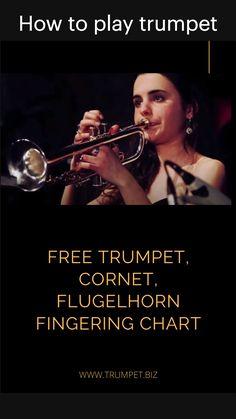 Play Trumpet, Trumpet Music, Trumpet Mouthpiece, Brass Instrument, Musicals, Musical Theatre