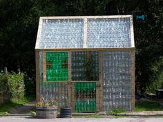 pflanzen Gewächshaus selber bauen