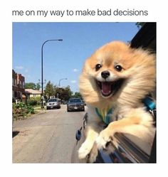 Bad Decisions http://ift.tt/2cwWcUc via /r/funny http://ift.tt/2cCV1Sr funny pictures