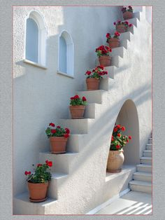 Red geraniums in clay pots = stairway perfection / gardening