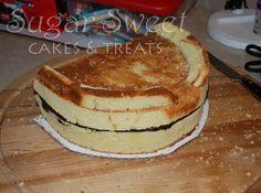 Dental School Grad Cake (and Pink Lemonade Cake Recipe) | Sugar Sweet Cakes and Treats
