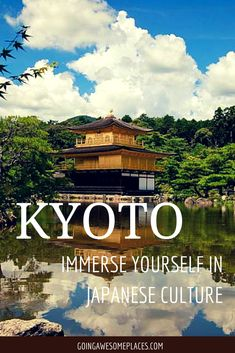 Kyoto is a beautiful place in Japan to immerse yourself into culture, history and amazing cuisine.  Just go.