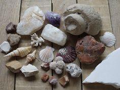 #souvenirs #travel #memories #stones #shells #nature #suveníry #cestovanie #spomienkyzciest #kamene #mušle