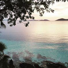Late day sun at Caneel #stjohn #usvi #caneelbay #caribbean #vacation  by @angelanewtonroyphotography