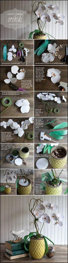 DIY - Paper Orchid Tutorial <3
