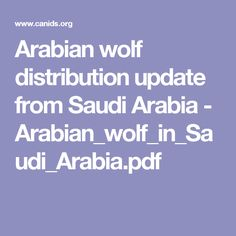 Arabian wolf distribution update from Saudi Arabia - Arabian_wolf_in_Saudi_Arabia.pdf
