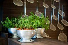 Revista Imóveis» Lugares inusitados também podem abrigar sua horta