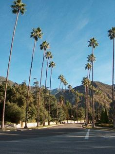 144 Best Altadena Images Los Angeles County Downtown Los Angeles