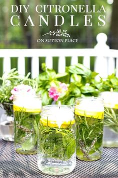 Easy tutorial for making Citronella Herb Floating Candles for your outdoor entertaining. Repels mosquitoes naturally with essential oil, citrus & herbs.