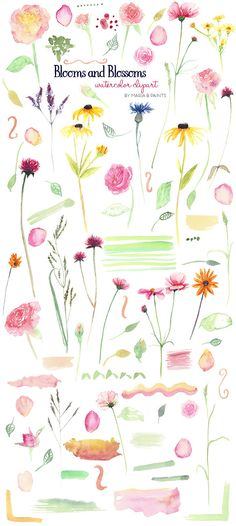 Watercolor Clip Art - Floral by Maria B. Paints on Creative Market