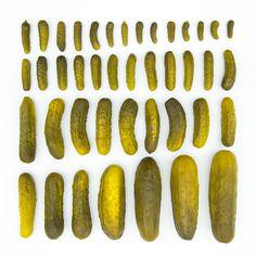 Knolled pickles. Emilie Blincoe.