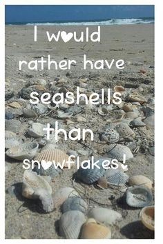 "~ ""I would rather have seashells than snowflakes!"" picture quote ~ beach quotes~ seashell quotes ~ #PhotoTakenByRosemary #CapturedIt ❄❄"