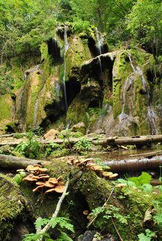 ☮✌Boho-Indie-Nature Blog!☼☾