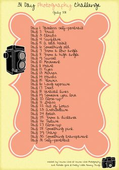 Photo Challenge - my goal for 2013! It will force me to learn more about my camera and improve my photography skills [add silhouette, delicate, diptych, and action nature.]