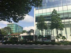 Singapore City, Multi Story Building