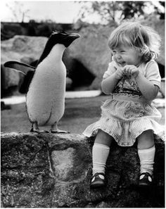 This is the exact face I made when I got to pet a penguin