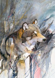 Nice illustration of a wolf. Watercolor Animals, Watercolor Paintings, Watercolours, Wolf Artwork, Art Pictures, Wolf Pictures, Animal Paintings, Pet Portraits, Art Tutorials
