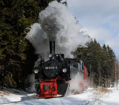 Charging along the edge of the forest - Steep climb along the edge of the forest from Gernrode towards Alexisbad on the Sekltebahn. Fresh snow lies on the ground but it is already clouding over. Steam Locomotive, Climbing, Clouds, Snow, Fresh, Mountaineering, Hiking, Eyes, Let It Snow