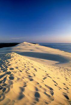 lacloserie:  Dune du Pyla - Aquitaine - France fetedelanature.com