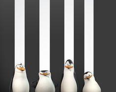 Madagascar Penguins Black And White Stripes Wallpaper