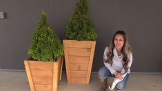 Easy Build DIY Planter Box | Ana White Bench Plans, Table Plans, Furniture Plans, Diy Furniture, Modern Furniture, Furniture Design, Sand Projects, Brush Cut, Pocket Hole