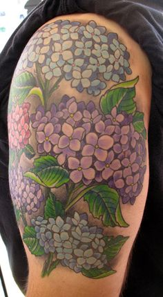 hydrangea tattoos Wallpaper