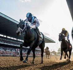 Tapwrit Wears Down Irish War Cry to Win Belmont Stakes