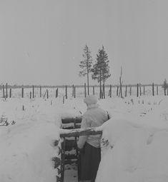 Vartiomies tähystää etumaastoon. Ohta 6.12.1942.