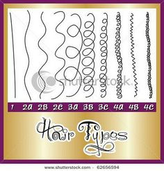 Hair Types....nice way to show it.