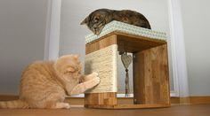 Katzenmöbel können Sie günstig selber basteln. Wir zeigen Ihnen, wie Sie einen einzigartigen Kratzwürfel für Katzen selber machen ➲ Bauanleitung