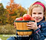 Children with healthier diets are smarter, research proves