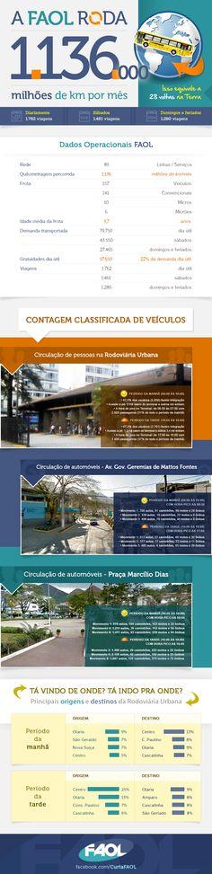 Infográfico com informações do estudo realizado pela Fetranspor em Nova Friburgo, em 2013.