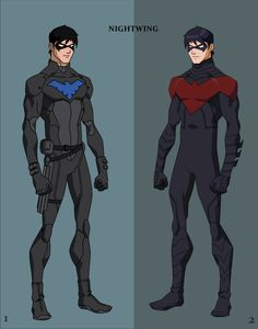 Blue and Red Nightwing Young Justice Style