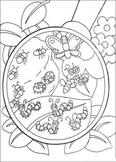 Dora the Explorer Malvorlagen für Kinder 79 Insect Coloring Pages, Super Coloring Pages, Spring Coloring Pages, Free Printable Coloring Pages, Colouring Pages, Coloring Sheets, Coloring Pages For Kids, Coloring Books, Dora The Explorer