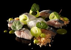 A yummy list of all the Michelin restaurants in Flanders & Bruxelles. Enjoy!