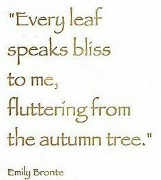 Every leaf speaks bliss...