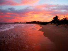 Praia dos Nativos in Trancoso, BA | Brazil