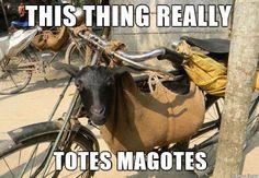 This Thing Really Totes Magotes