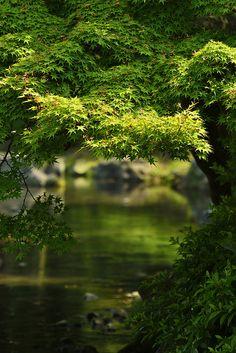 栗林公園スナップ by yukio.s, via Flickr