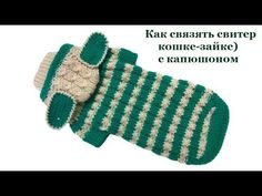 12 Свитер кошке-зайке с капюшоном - YouTube Sphynx Cat Clothes, Dog Clothes Patterns, Dog Dresses, Animals And Pets, Diy And Crafts, Baby Shoes, Crochet Patterns, Puppies, Knitting
